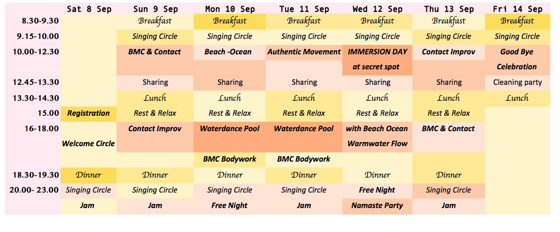 Program Somatic Flow Ibiza small